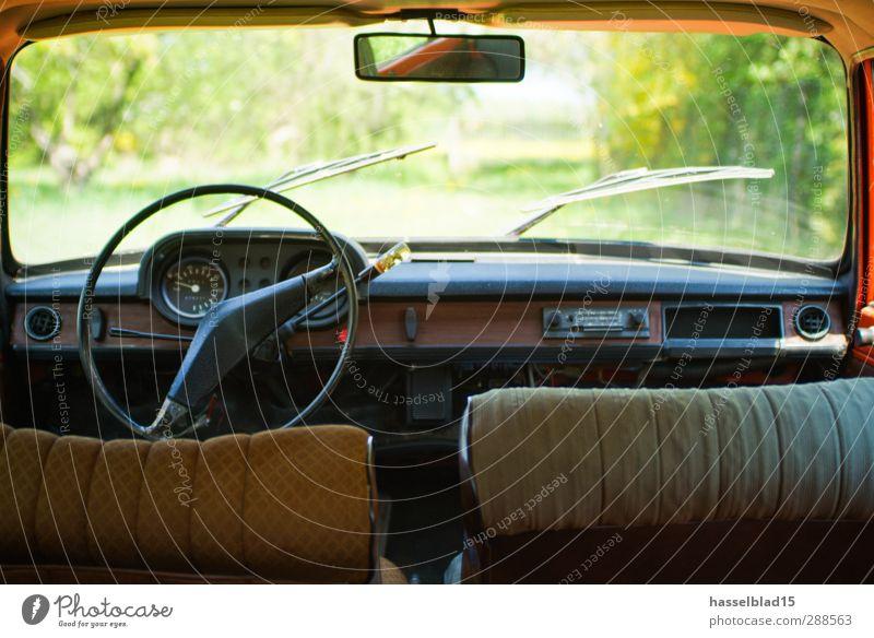 Wartburg Cockpit-View Kunst Rockabilly Frühling Sommer Wiese Fahrzeug PKW Oldtimer Rost alt genießen warten rot Tourist Youngtimer DDR Osten Deutschland Patina