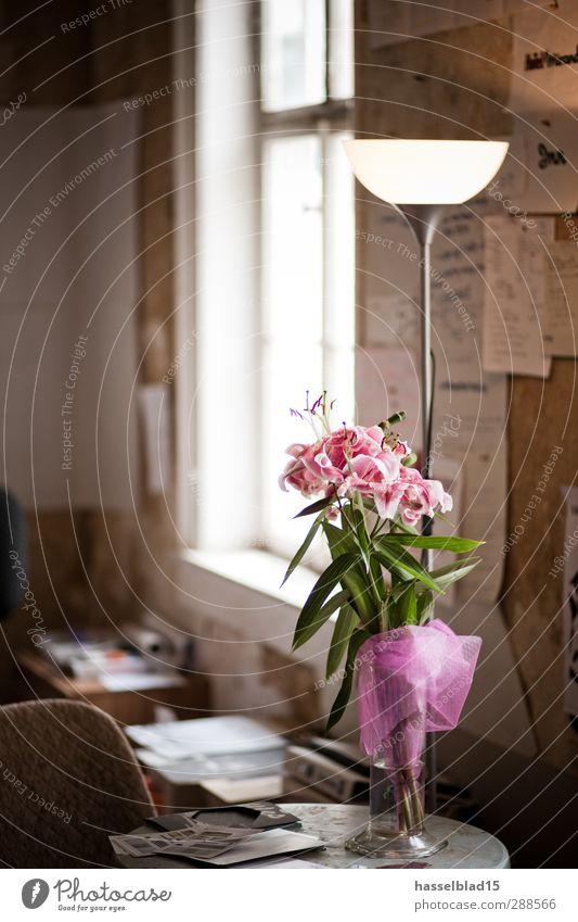 Blumengruß Lifestyle Stil Design Freude Glück Erholung Wohnung Renovieren Umzug (Wohnungswechsel) Lampe Stuhl Tisch Wohnzimmer Frühling Sommer Pflanze Orchidee