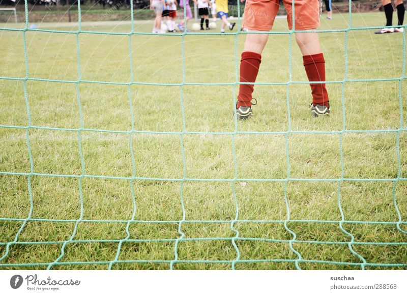 sie steht im tor - im tor - im tor ... Kind grün Mädchen Sport Spielen Kindheit maskulin Fußball stehen Sportmannschaft Kindergruppe Tor Strümpfe Fußballplatz Torwart androgyn