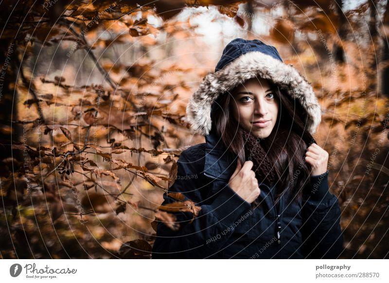Es herbstet sehr (6) Mensch feminin Junge Frau Jugendliche Erwachsene 1 18-30 Jahre Natur Landschaft Pflanze Herbst Schönes Wetter Wald Jacke Kapuzenjacke