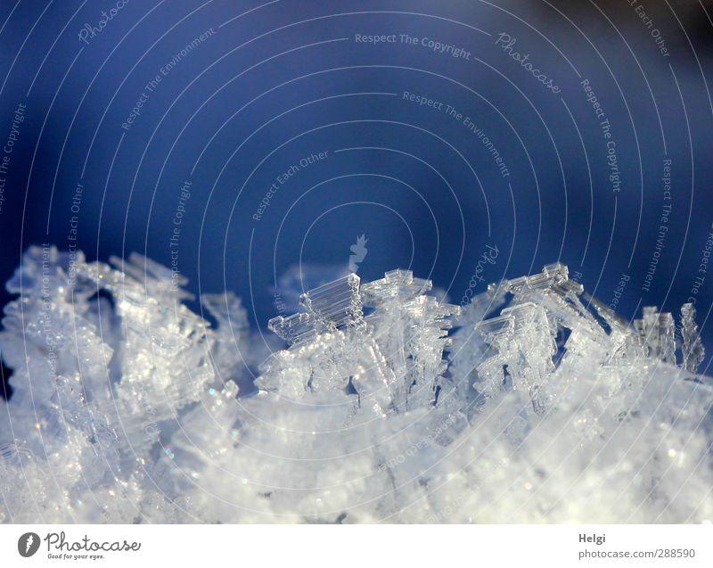 bizarre Winterwunderwelt Natur blau schön weiß Winter Umwelt kalt Schnee klein liegen Eis natürlich außergewöhnlich glänzend ästhetisch Wandel & Veränderung