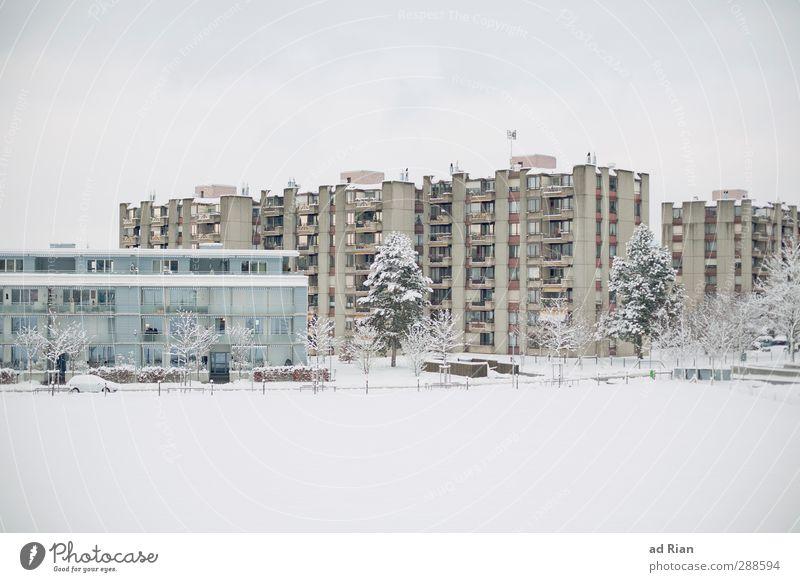 schöner leben 1.0 Natur Wolken Horizont Winter schlechtes Wetter Eis Frost Baum Wiese Feld Stadt Stadtrand Skyline Haus Hochhaus Bauwerk Gebäude Architektur