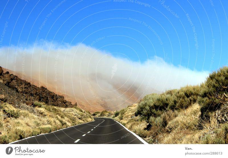Road Trip Himmel blau grün Pflanze Wolken Landschaft Straße Gras Felsen Sträucher fahren Hügel
