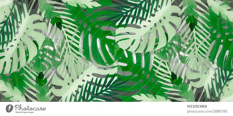 Tropischer Blätter Hintergrund . Natur Sommer Blatt Hintergrundbild Stil Garten Design Dekoration & Verzierung Fahne Urwald tropisch Spa Oase Palmenwedel