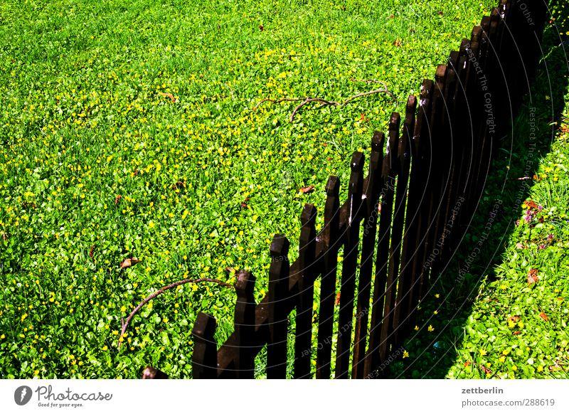 Lattenzaun Häusliches Leben Wohnung Traumhaus Garten Umwelt Natur Landschaft Sommer Klima Klimawandel Wetter Schönes Wetter Gras Park Wiese Freude Zufriedenheit