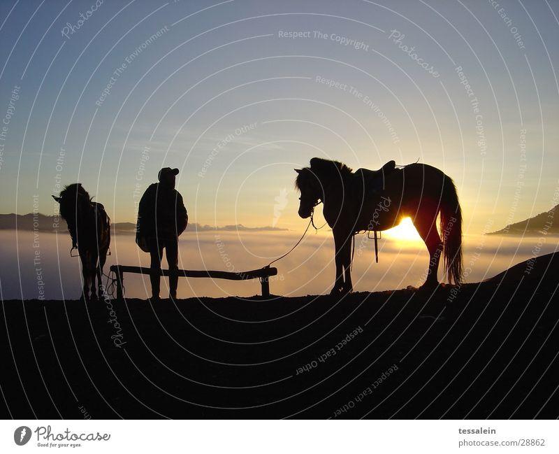 Warten am Fuße des Wulkans Mensch Stimmung Pferd Erwartung