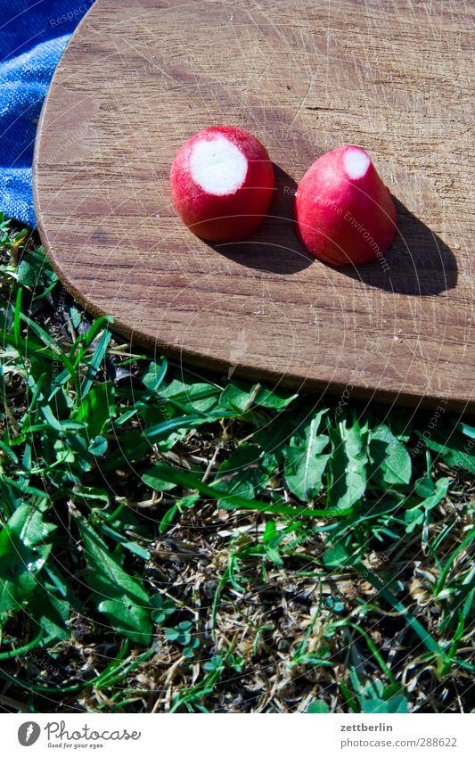 Radieschen Ferien & Urlaub & Reisen Freude Leben Essen Frucht Lebensmittel paarweise Ausflug Gemüse Camping Teller Picknick Frankfurt am Main Schalen & Schüsseln Vitamin Schneidebrett