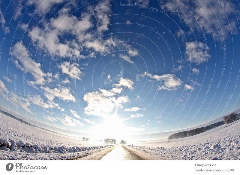 Weg zur Sonne Natur Landschaft Himmel Wolken Sonnenlicht Winter Schönes Wetter Schnee Pflanze Baum Feld Verkehr Verkehrswege Straße leuchten blau Einsamkeit