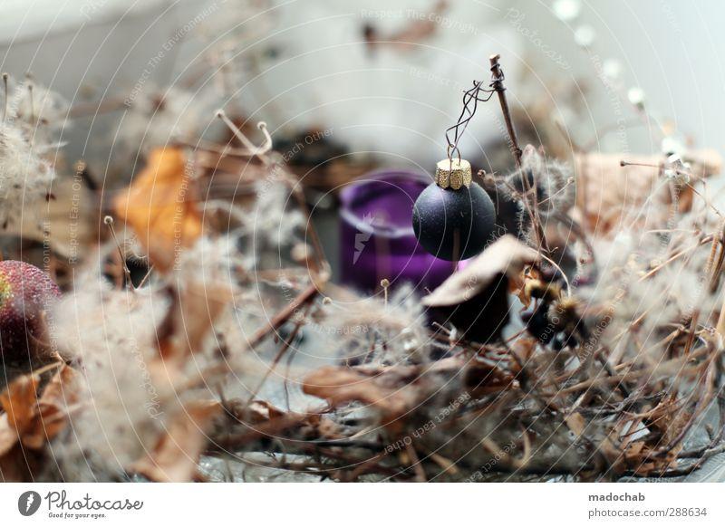 Sommermärchen Weihnachten & Advent ruhig Wärme Gefühle Stil Lifestyle Feste & Feiern Stimmung Design Zufriedenheit Häusliches Leben Dekoration & Verzierung Idylle ästhetisch Fröhlichkeit Kitsch