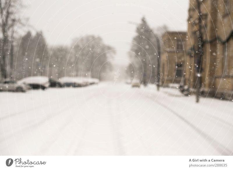 winter's here Urelemente Winter Wetter schlechtes Wetter Schnee Schneefall Straße Fahrzeug PKW kalt Schneedecke Gedeckte Farben Außenaufnahme Unschärfe