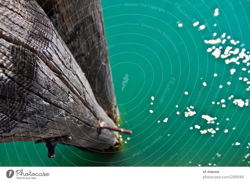 Bootssteg Wasser Sommer Schönes Wetter Seeufer Bucht Meer Hafenstadt Stadtrand Schifffahrt Bootsfahrt Jacht Holz Metall Stahl Rost genießen Schwimmen & Baden