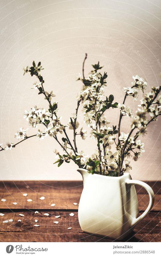Vintage Frühling blumiger Hintergrund Stil Design schön Duft Innenarchitektur Dekoration & Verzierung Tisch Kunst Natur Pflanze Baum Blume Blüte Blumenstrauß