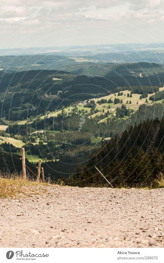 Weit, weit weg... Natur blau grün Landschaft Wald Berge u. Gebirge Gras Wege & Pfade grau