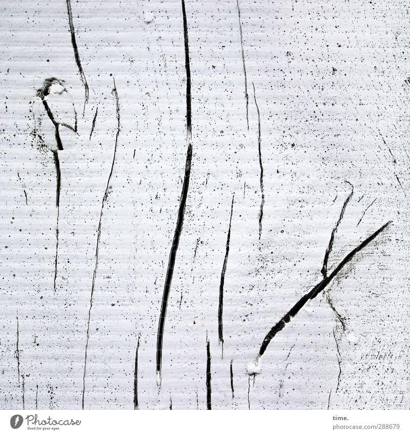 Lebenslinien #56 alt weiß Farbe Holz Architektur grau Kunst Tanzen Kraft Klima wild Design leuchten ästhetisch Kreativität