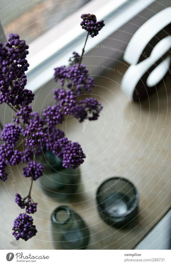 Deko Haus Innenarchitektur Stil Lifestyle Wohnung Design Raum Häusliches Leben Dekoration & Verzierung Sträucher Buchstaben violett Beeren Vase verschönern