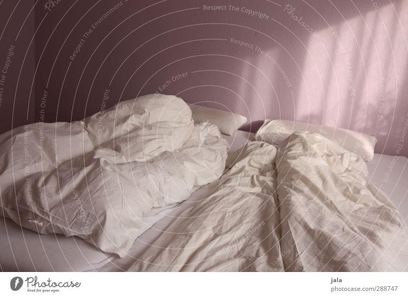 traumland Häusliches Leben Wohnung Innenarchitektur Bett Schlafzimmer einfach violett weiß Farbfoto Innenaufnahme Menschenleer Textfreiraum oben Tag Licht