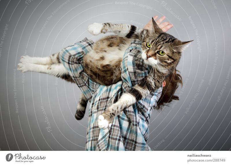 Junge mit der Katze Kind blau Freude Tier Spielen lustig grau Freundschaft Zusammensein Kindheit Kraft glänzend niedlich festhalten