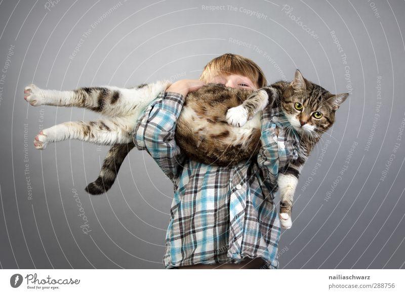 Junge mit der Katze Mensch Kind blau Freude Tier gelb Spielen lustig grau klein braun Kindheit maskulin groß