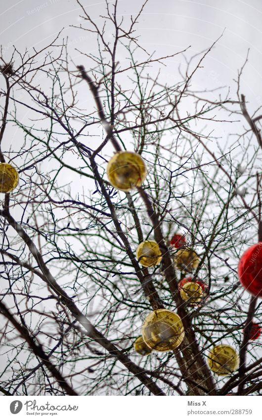 Weihnachtsbaum Weihnachten & Advent Winter Baum Sträucher hängen gold rot verschönern Dekoration & Verzierung Weihnachtsdekoration Baumschmuck Glaskugel