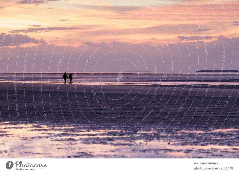 Zwei Mensch Freundschaft Paar Partner 2 Natur Wetter Küste Strand Meer Erholung wandern Ferne frei Zusammensein natürlich positiv schön gold violett