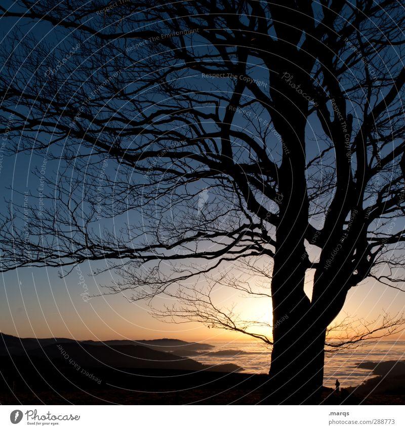 Kitschy Natur Ferien & Urlaub & Reisen schön Baum ruhig Landschaft Ferne Umwelt dunkel Berge u. Gebirge Herbst Leben Freiheit Horizont Stimmung Klima