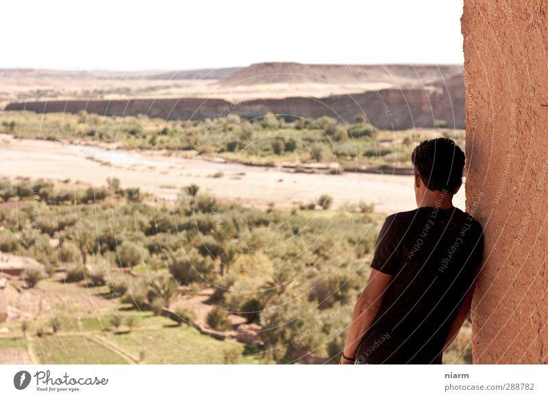 und viel grüner is' da unten auch! Mensch Jugendliche Ferien & Urlaub & Reisen Sommer Sonne Ferne Junger Mann Erwachsene 18-30 Jahre Traurigkeit Freiheit Denken