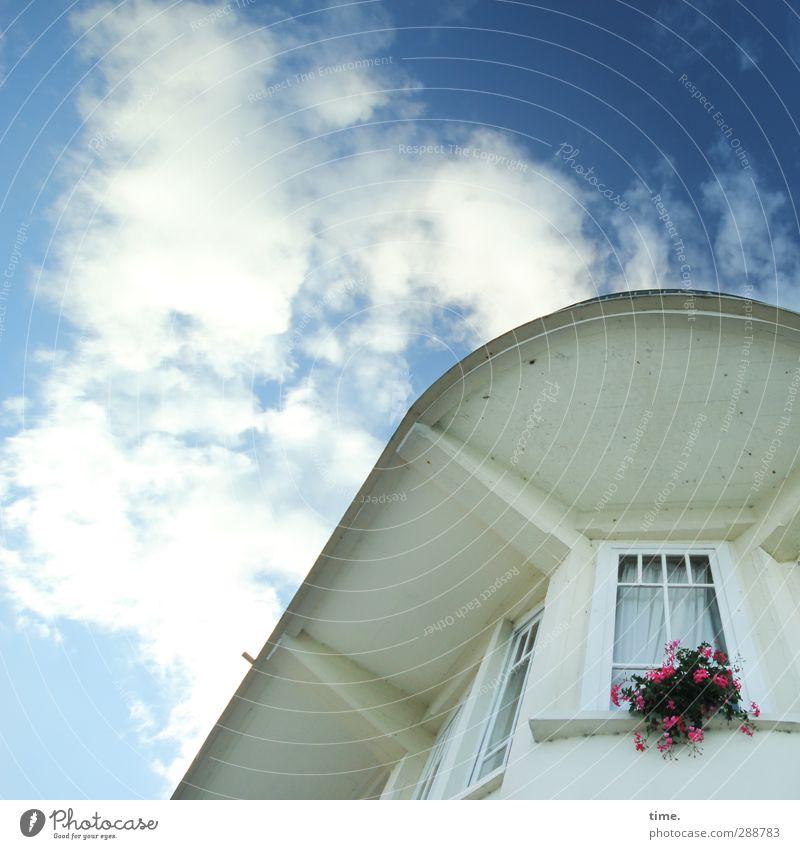 Vorzimmerdamen Himmel Stadt Pflanze Blume Wolken Haus Fenster Gefühle Architektur Glück Gebäude Kunst Fassade Design Idylle Schönes Wetter