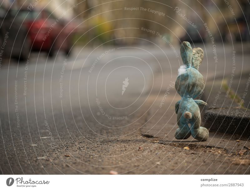 Hase dreckig am Straßenrand Kind Gesundheit Wege & Pfade Feste & Feiern bedrohlich Ostern Ziel Rauchen Kleinkind Verkehrswege Hase & Kaninchen Alkohol