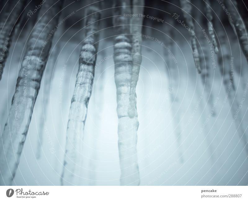 auf eis! Wasser Himmel Winter Wetter Eis Frost Durst Ewiges Eis Eiszapfen gefangen Stab Tropfsteinhöhle gefroren frieren Getränkezutat Farbfoto Gedeckte Farben