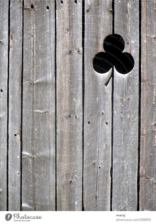 Holzklee Holzbrett Holzwand Museum Hütte Scheune Fassade Zeichen Ornament alt einfach elegant braun schwarz verwittert Kleeblatt Farbfoto Gedeckte Farben