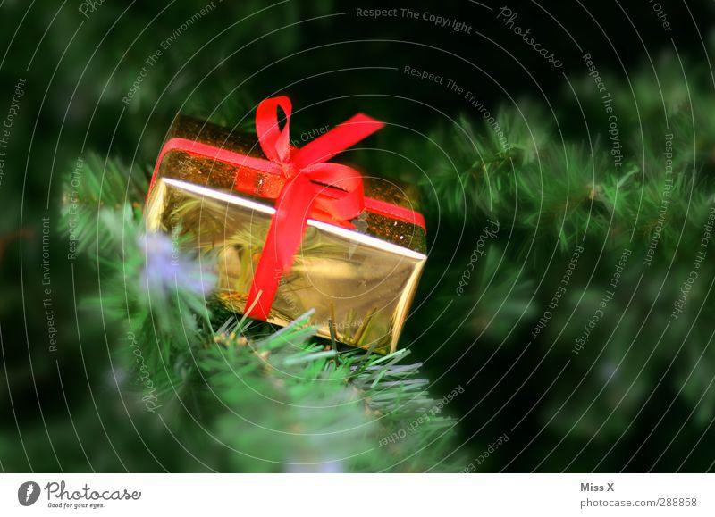 Für Dich Feste & Feiern Weihnachten & Advent Geburtstag Winter Baum glänzend gold rot Weihnachtsgeschenk Paket Schleife Geschenk Tanne Ast Tannennadel Farbfoto