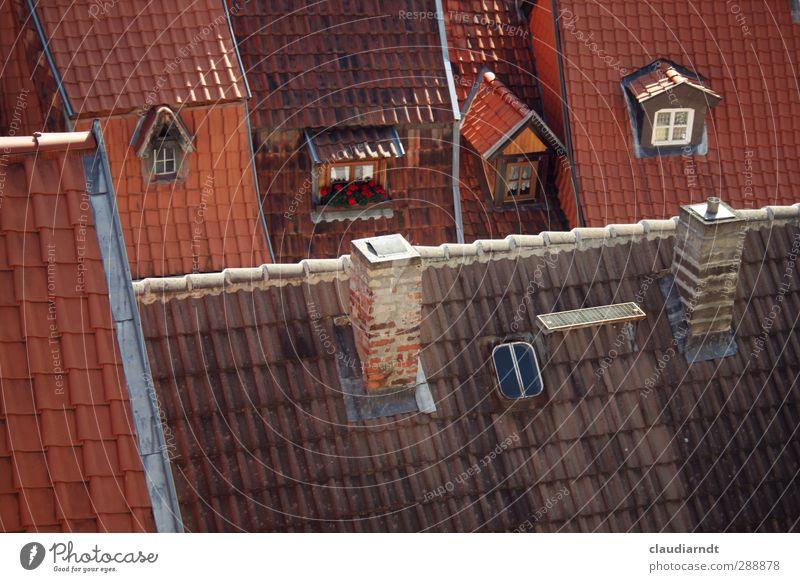 Vogelperspektive Quedlinburg Deutschland Europa Kleinstadt Stadt Altstadt Haus Einfamilienhaus Gebäude Architektur Fenster Dach Schornstein Dachziegel
