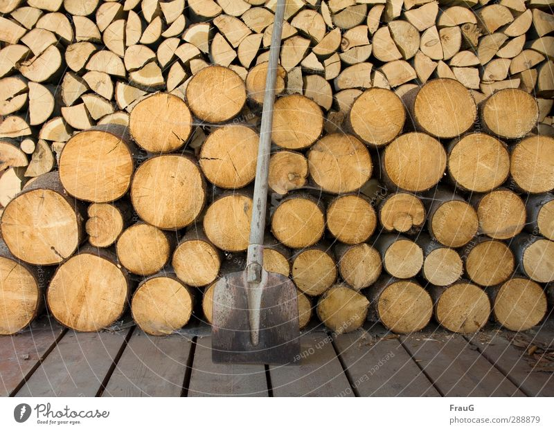 ferddich... Schaufel Holz Arbeit & Erwerbstätigkeit braun Geborgenheit Warmherzigkeit Ordnungsliebe anstrengen Natur Brennholz hacken gesägt Stapel Farbfoto