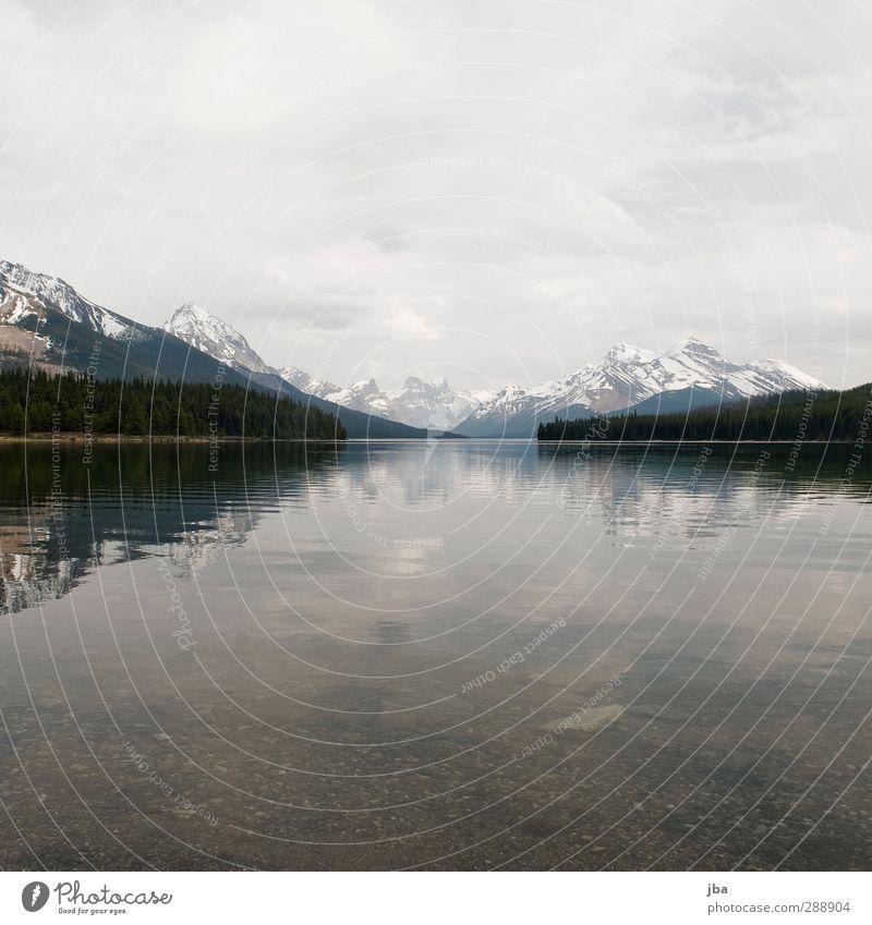 Maligne Lake harmonisch Erholung ruhig Tourismus Ferne Sommer Berge u. Gebirge wandern Natur Landschaft Wasser Wolken schlechtes Wetter Wald Felsen Gipfel