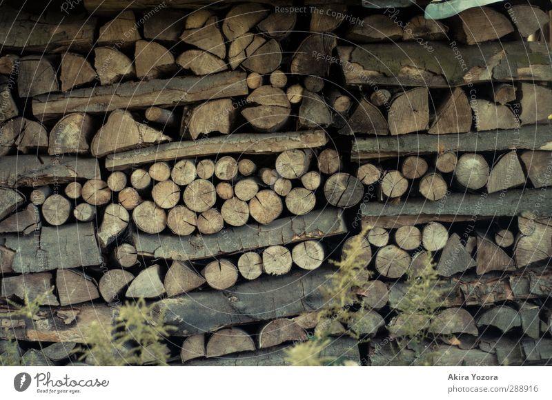 Stapelhölzchen Natur Holz Linie Kreis Ast Sammlung Lager Vorrat
