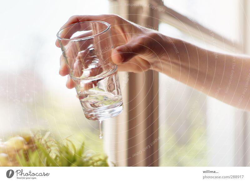 Hand mit Wasserglas Getränk Trinkwasser Glas festhalten Durst Erfrischungsgetränk Durstlöscher Gesundheit Gesunde Ernährung lebenswichtig Wasserhaushalt