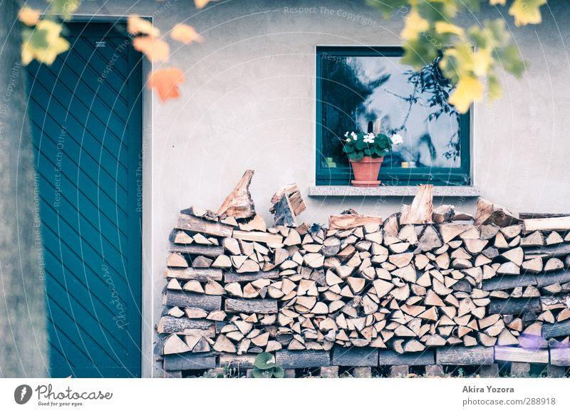 Holz vor der Hütte Natur blau grün Baum rot Haus Fenster Wand Herbst braun Schutz Lager Geborgenheit Blumentopf Vorrat