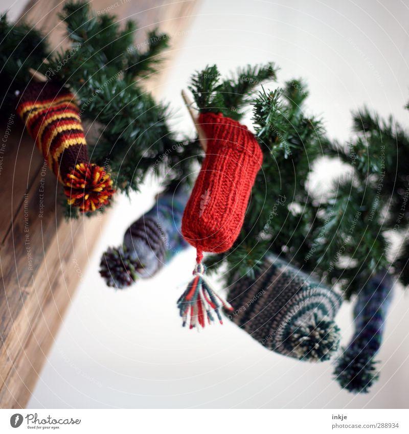 Wichtelmützen II Weihnachten & Advent klein Kindheit Freizeit & Hobby Häusliches Leben Dekoration & Verzierung niedlich Geschenk einzigartig Mütze Überraschung hängen Tradition innovativ Tannenzweig Girlande