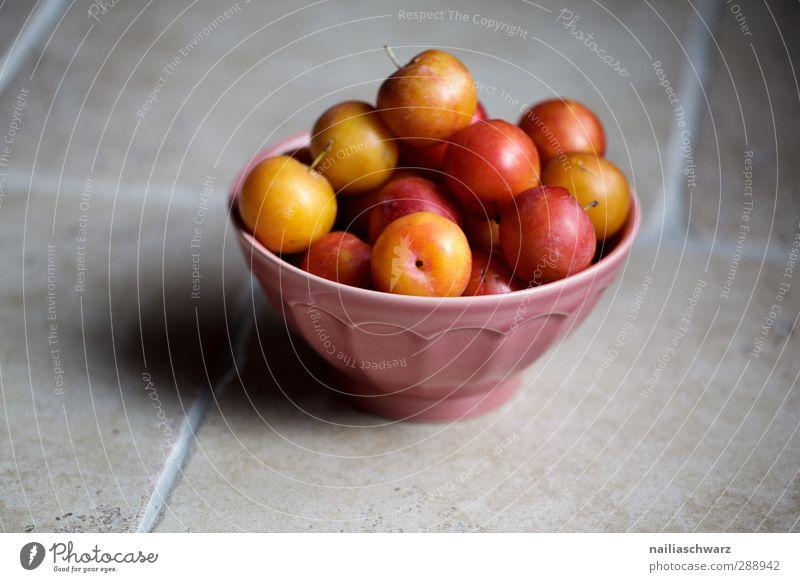 Pflaume schön rot gelb Wärme grau Gesundheit natürlich Frucht Lebensmittel frisch Ernährung süß genießen Appetit & Hunger Ernte lecker