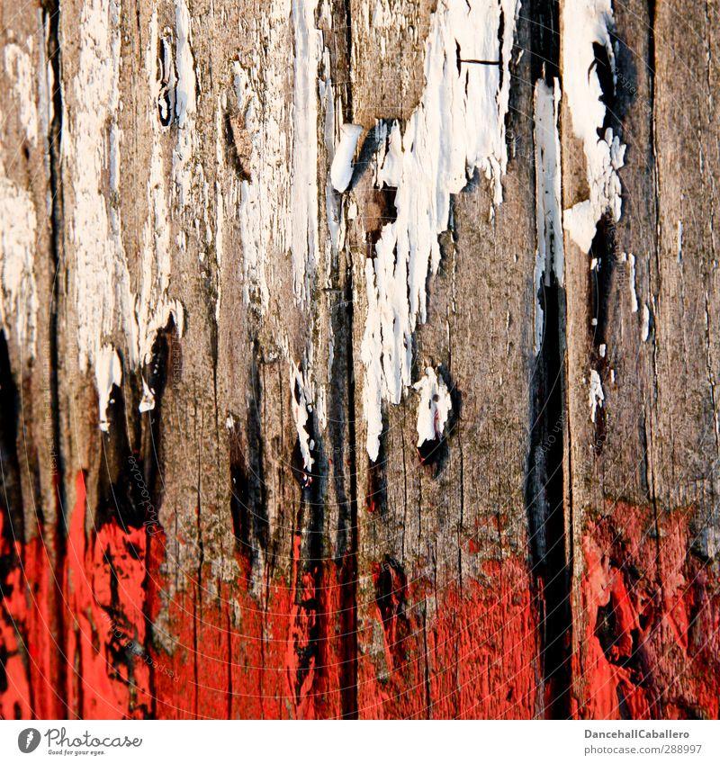 weiß & rot Himmel alt weiß Farbe rot Holz Linie Kunst Vergänglichkeit streichen Spuren trocken Fahne Zerstörung abblättern Renovieren