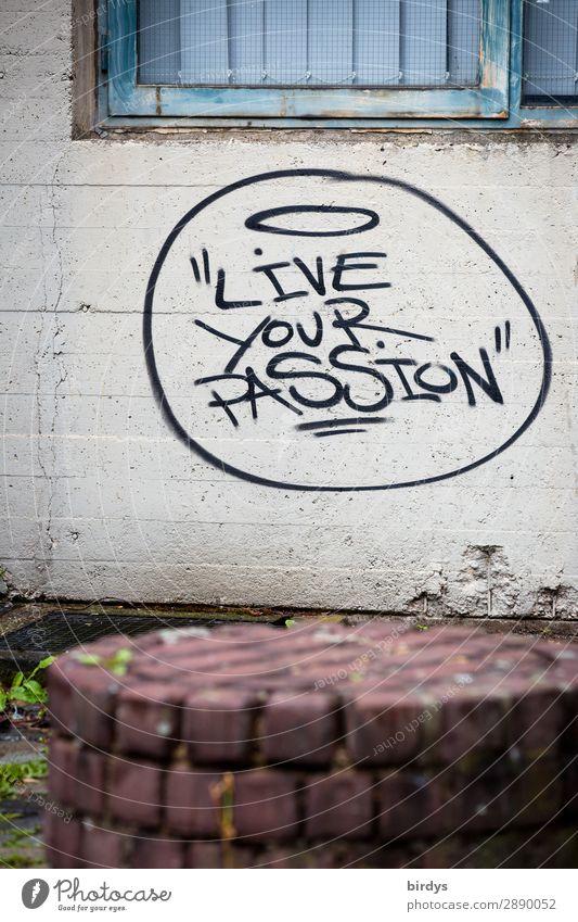 führt zu Erfolg Beruf Karriere Mauer Wand Schriftzeichen Graffiti Liebe träumen Wachstum authentisch einzigartig nachhaltig positiv blau grau rot schwarz