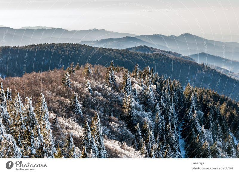 Gebirge Tourismus Natur Landschaft Urelemente Wolkenloser Himmel Winter Schönes Wetter Wald Berge u. Gebirge Mittelgebirge Kandel Horizont Erholung Stimmung