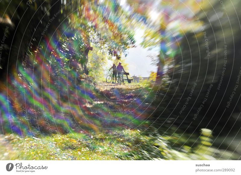 Ausflügler Mensch Paar Erwachsene 2 Umwelt Natur Sommer Herbst Schönes Wetter Gras Park Idylle Sonnenstrahlen Ausflug Parkbank Fahrrad Waldlichtung Lensbaby