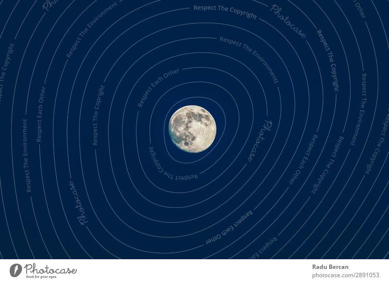 Der Mond erhebt sich am Himmel bei Nacht. voll Hintergrundbild Weltall Astronomie Oberfläche Planet schwarz Wissenschaften Natur Satellit weiß dunkel