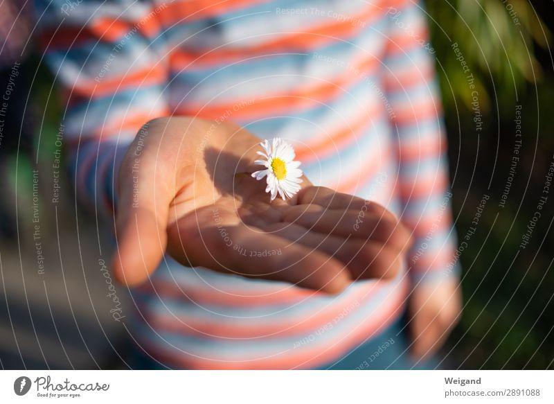Dankeschön harmonisch Kindergarten Kleinkind Junge Kindheit 3-8 Jahre Liebe frei Freundlichkeit Fröhlichkeit Gesundheit Glück Sympathie Freundschaft Mitgefühl