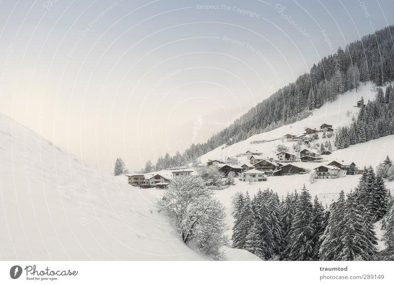 A beautiful day. Ferien & Urlaub & Reisen Winter Landschaft Wald Ferne Berge u. Gebirge kalt Schnee Freiheit wandern Schönes Wetter Alpen Hügel