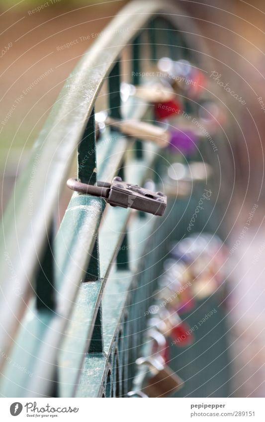 altes eisen rostet nicht Liebe Herbst Gefühle Glück Linie Stimmung Park Beginn Brücke Sicherheit Streifen Romantik Zeichen Ewigkeit Lebensfreude