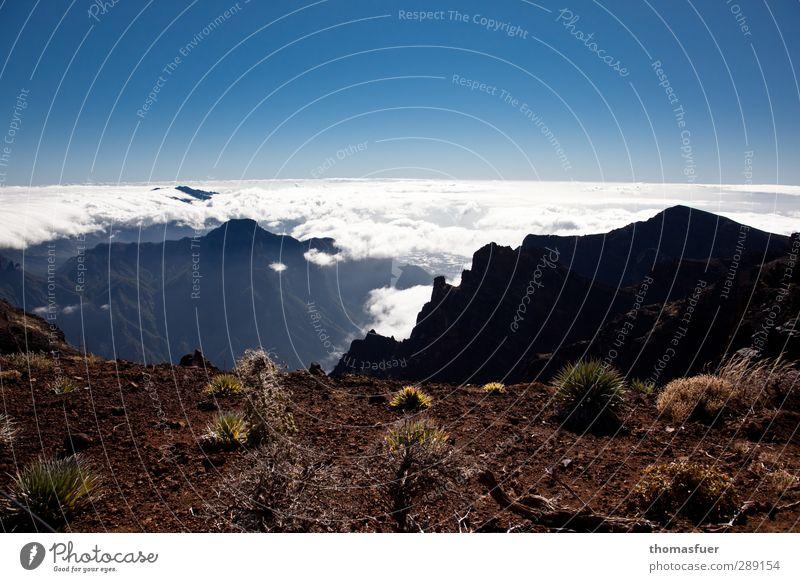 Ich bin dann mal weg Himmel Natur blau Ferien & Urlaub & Reisen weiß Sommer Sonne Landschaft Ferne Berge u. Gebirge Gras Freiheit Sand Erde Felsen Horizont