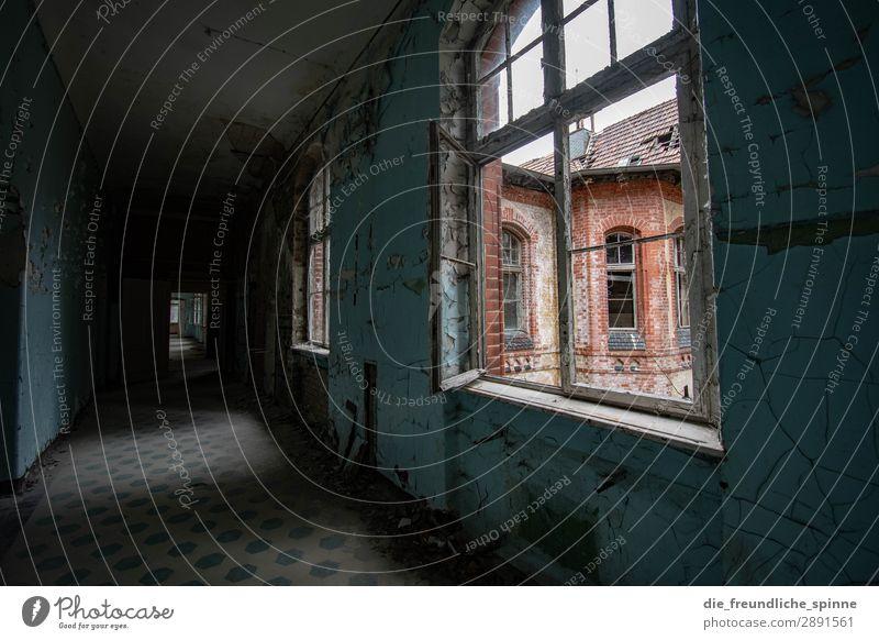 Heilstätten Beelitz Lost Place Haus Farbfoto Menschenleer Innenaufnahme lost place Verfall Ruine Vergänglichkeit Gebäude alt Architektur lost places Wand