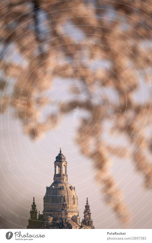#A# Dresdner Blüte VII Kunst ästhetisch Dresden Sachsen Deutschland Kuppeldach historisch Historische Bauten Altstadt Elbufer Kirschblüten Frühling Frühlingstag